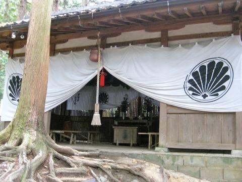 Open your Stargate Heart – Japan Tour